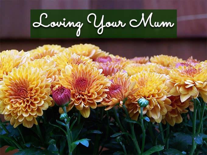Loving Your Mum