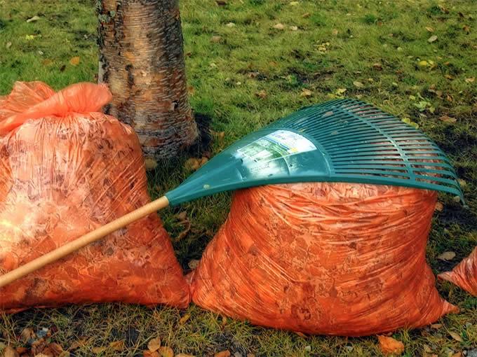 leafbag-rakes