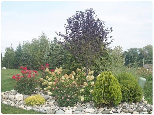 Landscape-Designin-georges-market-nursery2