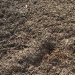 Bulk Dark Mulch
