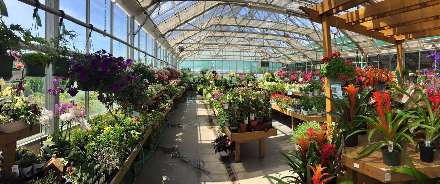 greenhouse-georges-market1